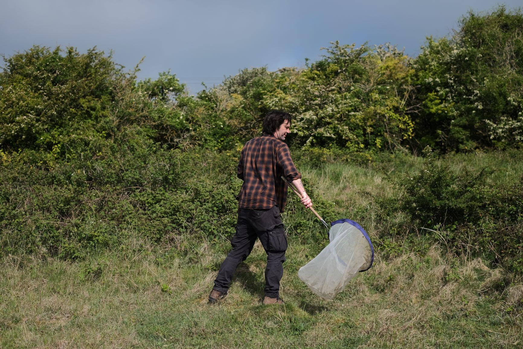 A surveyor sweep netting around grass and scrub during during biodiversity monitoring work