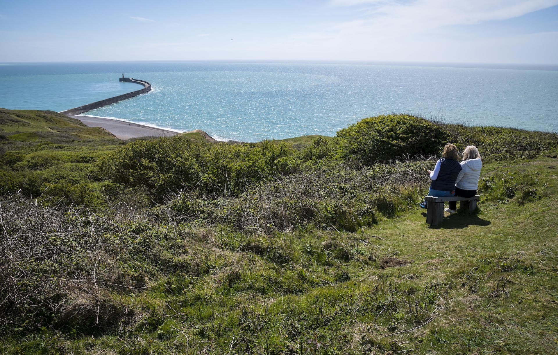 Photo by Liz Finlayson/Vervate The Living Coast, the Brighton & Lewes Downs UNESCO Biosphere Region includes land and sea from Shoreham to Newhaven.  Castle Hill Nature Reserve Newhaven