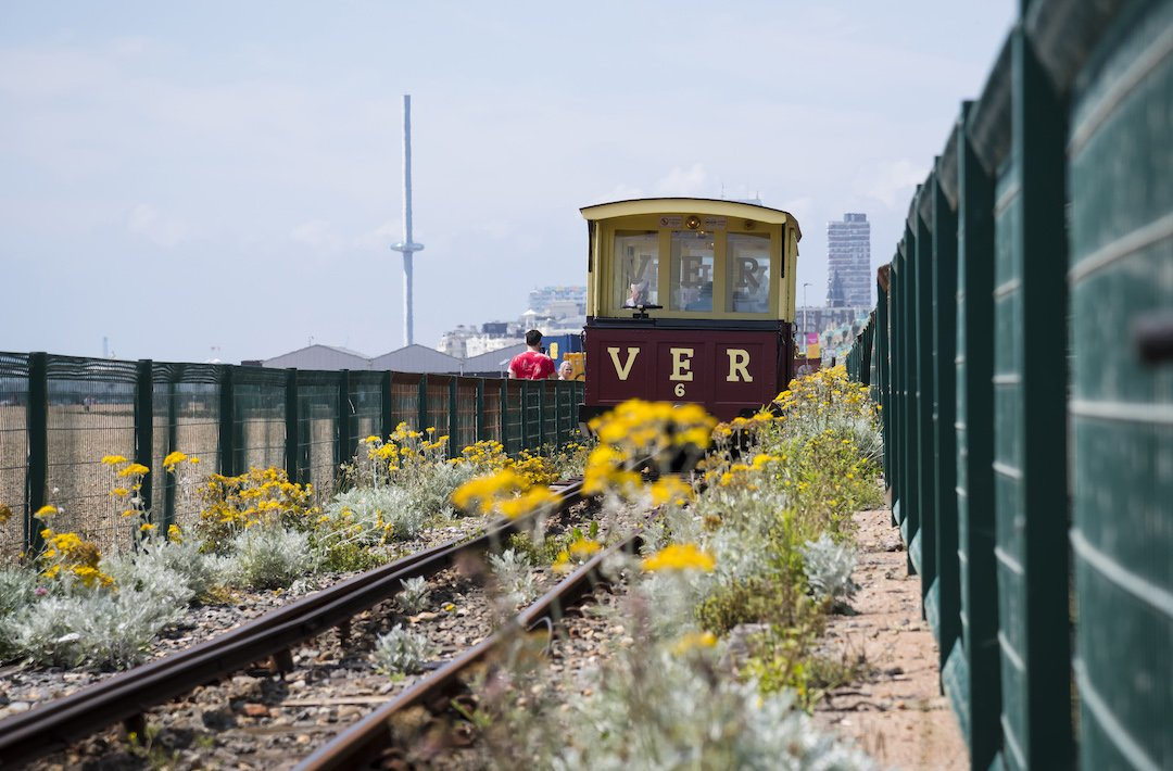 Photo by Liz Finlayson/Vervate The Living Coast, the Brighton & Lewes Downs UNESCO Biosphere Region includes land and sea from Shoreham to Newhaven.  The Volk's Electric Railway is a narrow gauge heritage railway in Brighton