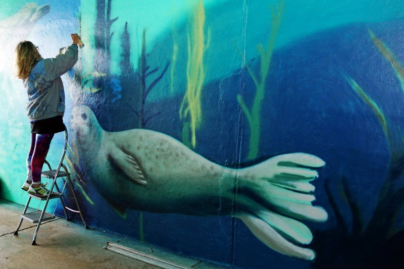 Saltdean Tunnel mural is ready for viewing
