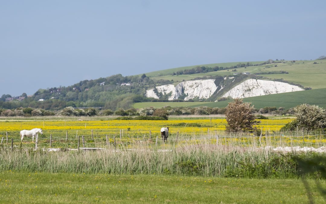 View across open land towards Lewes