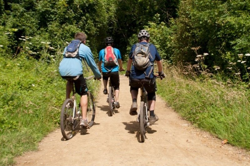 Three people riding bicyles in the biosphere region
