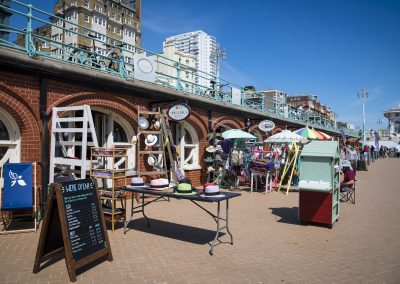 Photo by Liz Finlayson/Vervate The Living Coast, the Brighton & Lewes Downs UNESCO Biosphere Region includes land and sea from Shoreham to Newhaven. Brighton Arches by the i360