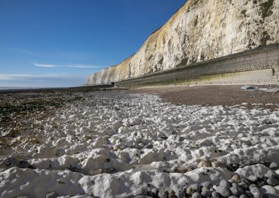 Photo by Liz Finlayson/Vervate The Living Coast, the Brighton & Lewes Downs UNESCO Biosphere Region includes land and sea from Shoreham to Newhaven. Chalk Beds between Telscombe and Peacehaven