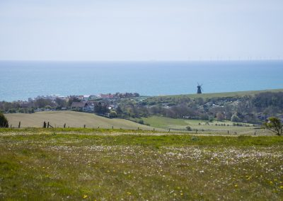 Photo by Liz Finlayson/Vervate The Living Coast, the Brighton & Lewes Downs UNESCO Biosphere Region includes land and sea from Shoreham to Newhaven. Road up to Balsdean