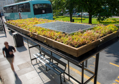 Living roofs for the Living Coast