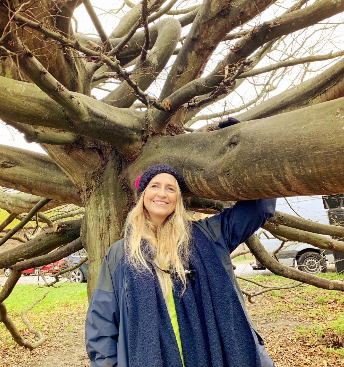 forest bathing sussex